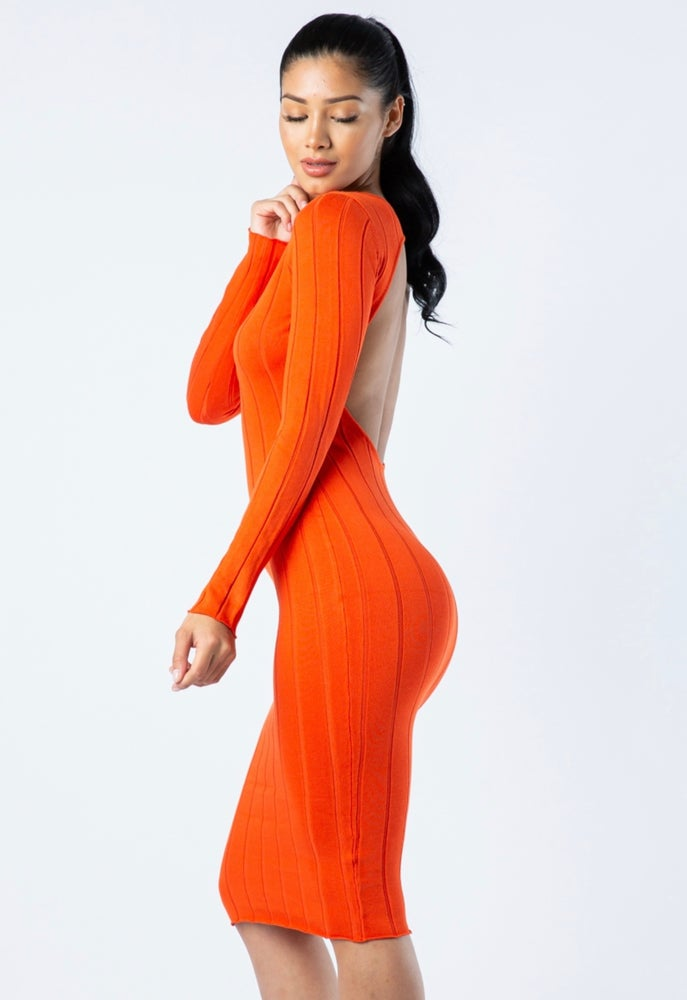 Kori Bodycon Dress. Use Coupon Code: FLASH40
