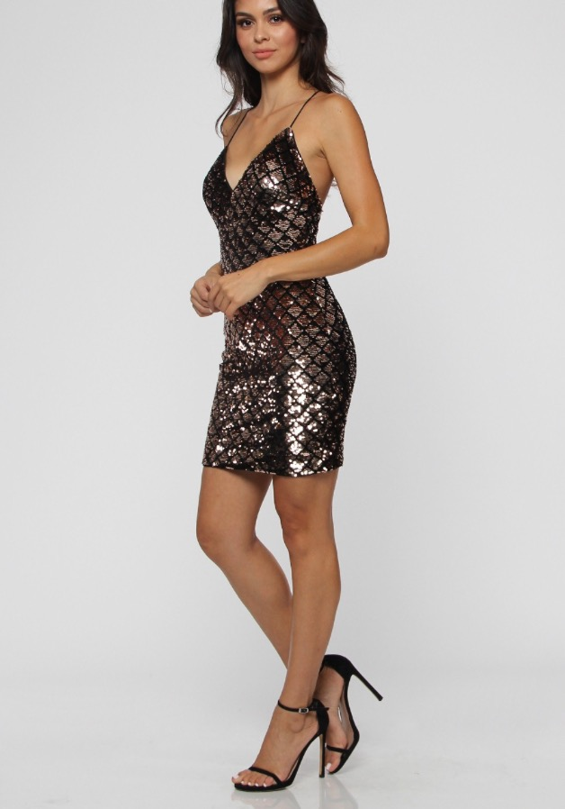 Ashley Sequins Dress. Use Coupon Code: FLASH40