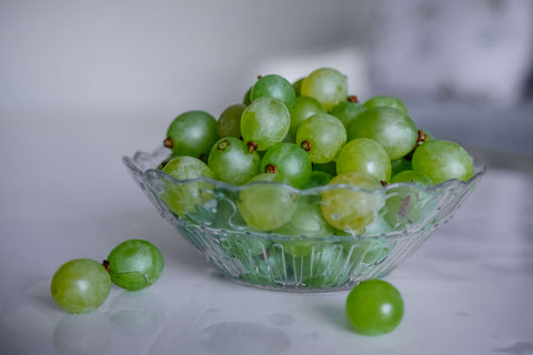 Can Dog Eat Grapes