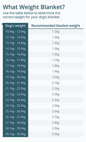 How to choose the right weight for your medium size dog