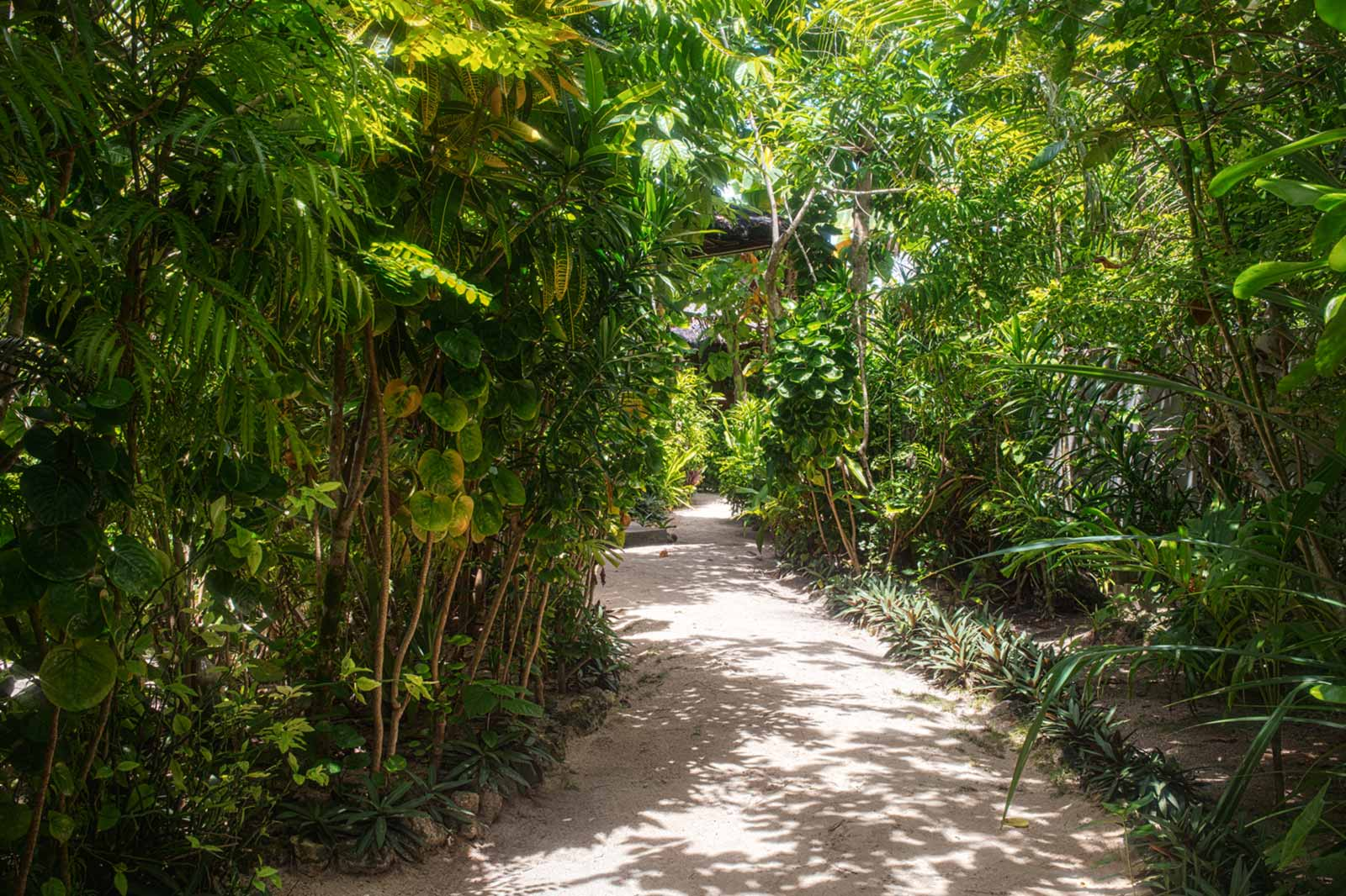 home resort beach path