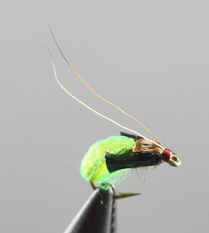 Green Caddis Emerger