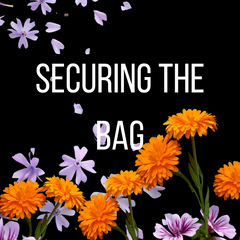 Securing The Bag Business Foundation Class