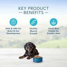 Load image into Gallery viewer, Blue Buffalo Life Protection Natural Chicken & Oatmeal Recipe Small Breed Puppy Dry Dog Food