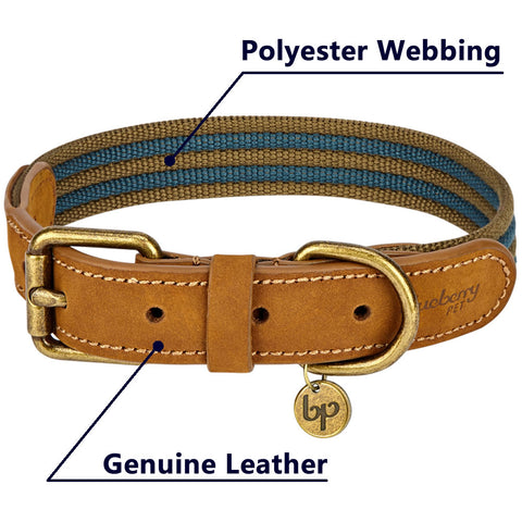 Blueberry Pet Polyester Fabric Webbing and Soft Genuine Leather Dog Collar in Navy and Olive