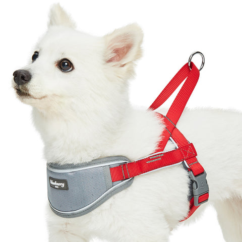 Blueberry Soft & Comfy 3M Reflective Strips Padded Red Dog Harness