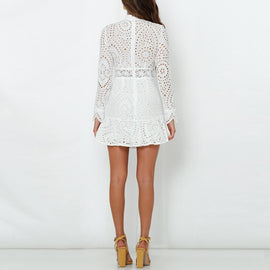 Elegant White Lace Embroidery Mini Party Dress