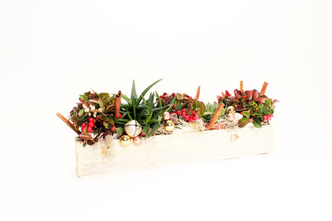 HOLIDAY SUCCULENT AND WINTERBERRY PLANTER
