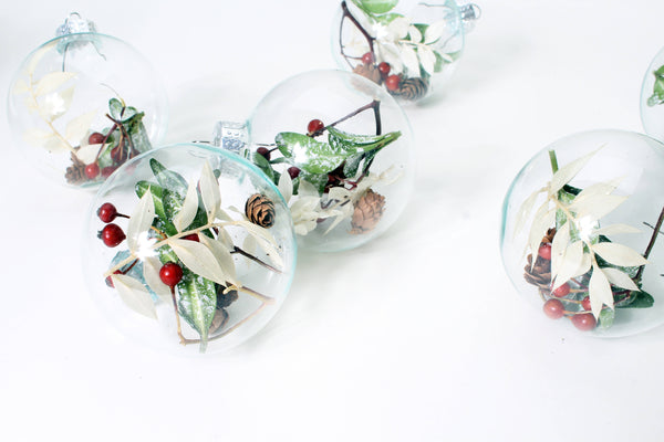 DIY KIT SET OF WINTER GREENERY BULBS