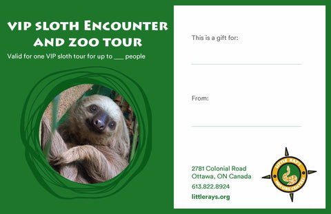 VIP Sloth Encounter and Zoo Tour Gift Certificate - CANADA