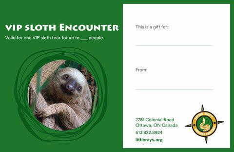 VIP Sloth Encounter Gift Certificate - CANADA