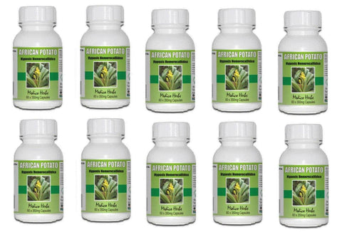 African Potato Capsules - 60x350mg x 10 Bottles