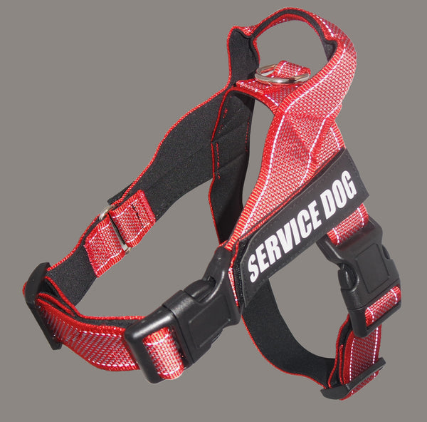 Dog chest strap large dog explosion-proof blunt medium and large dog car safety chest strap traction rope pet strap