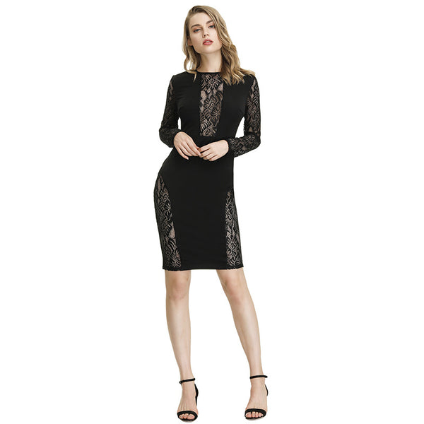 New foreign trade women's clothing in Europe and America in autumn of 2019 eBay Amazon sexy lace perspective Slim Pencil Skirt
