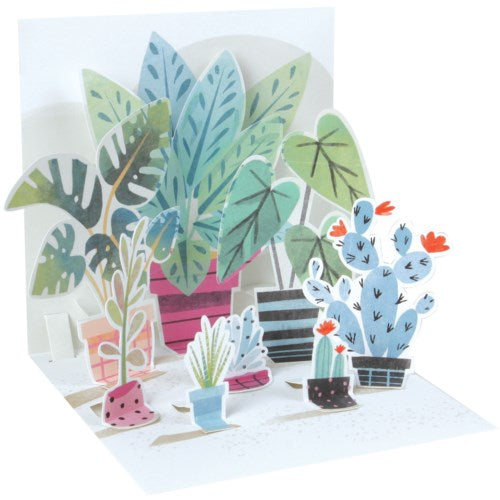 Potted Plants - Pop Up Greeting Card