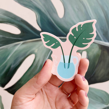 JV Monstera Jug | Sticker