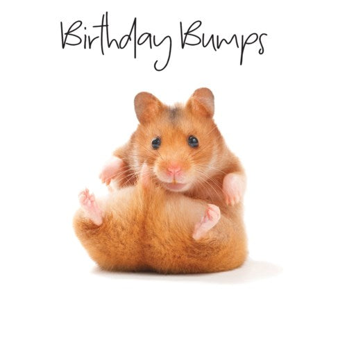 Birthday Bumps - Greeting Card