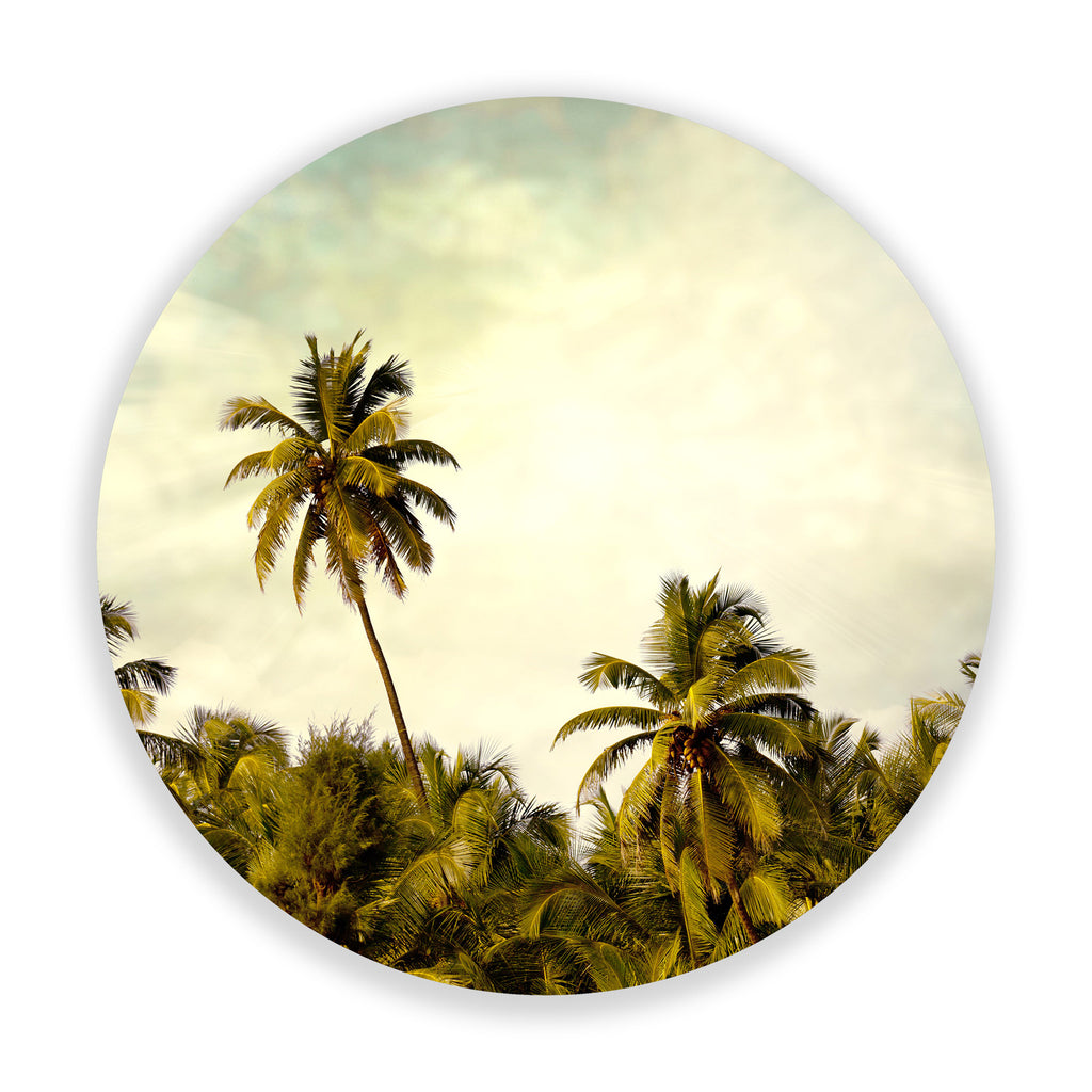 Palm Tree Supreme (Circle)