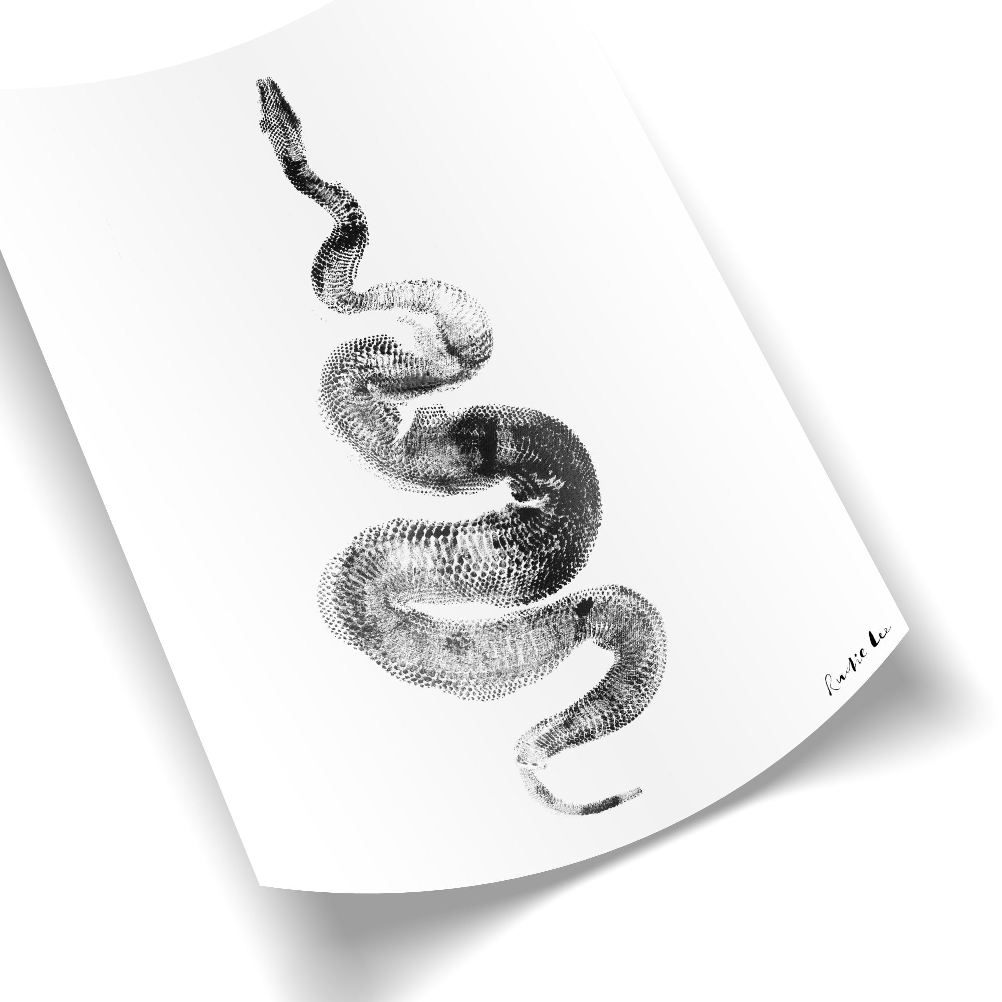 Python Gyotaku No. 01 (Minimalist) by Rudie Lee