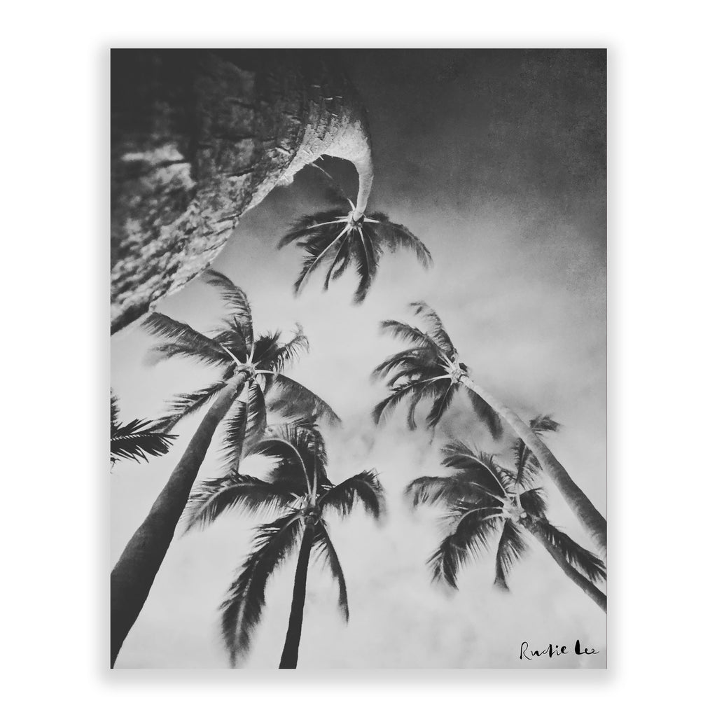 Swaying Palms (BW) by Rudie Lee