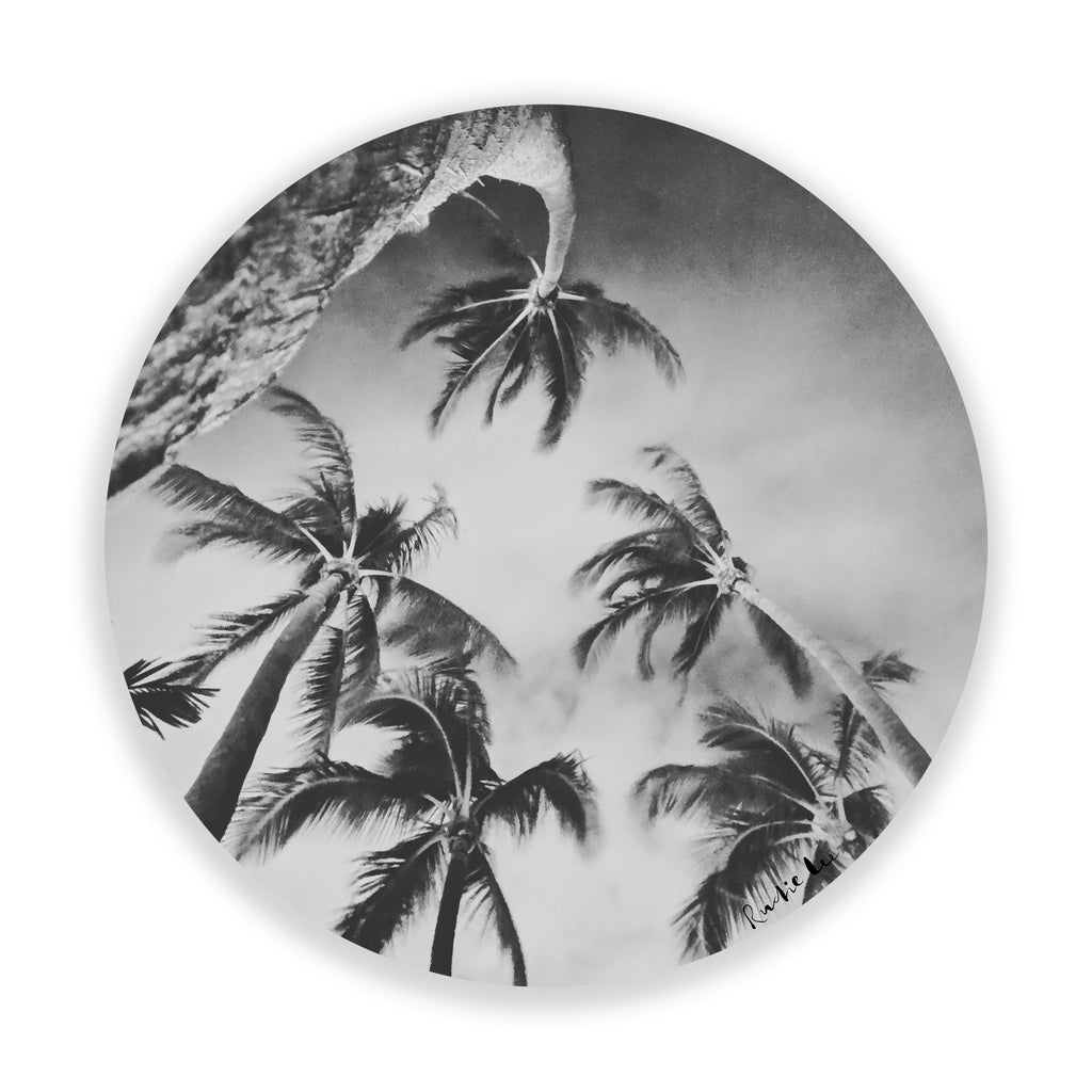 Swaying Palms (BW Circle) by Rudie Lee