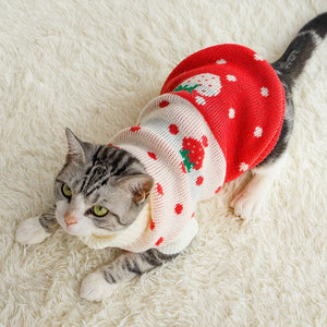 Fruit Print Cat Sweater Washable Warm Knitted