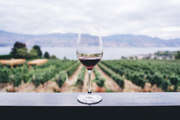 Wine Travel in 2019: Where to Go and How to Do It!