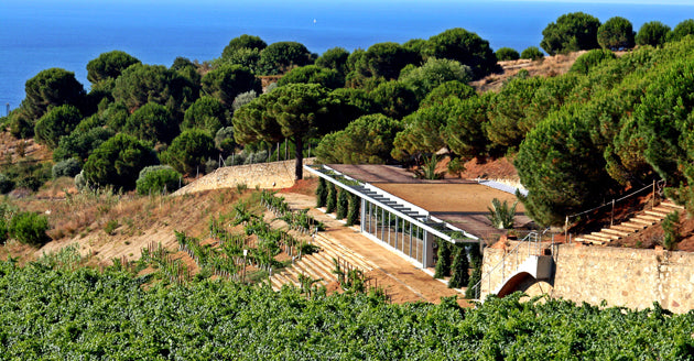 Alta Alella winery day trip from Barcelona