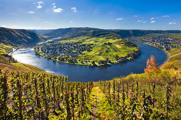 Mosel Valley Germany Immich Batterieberg