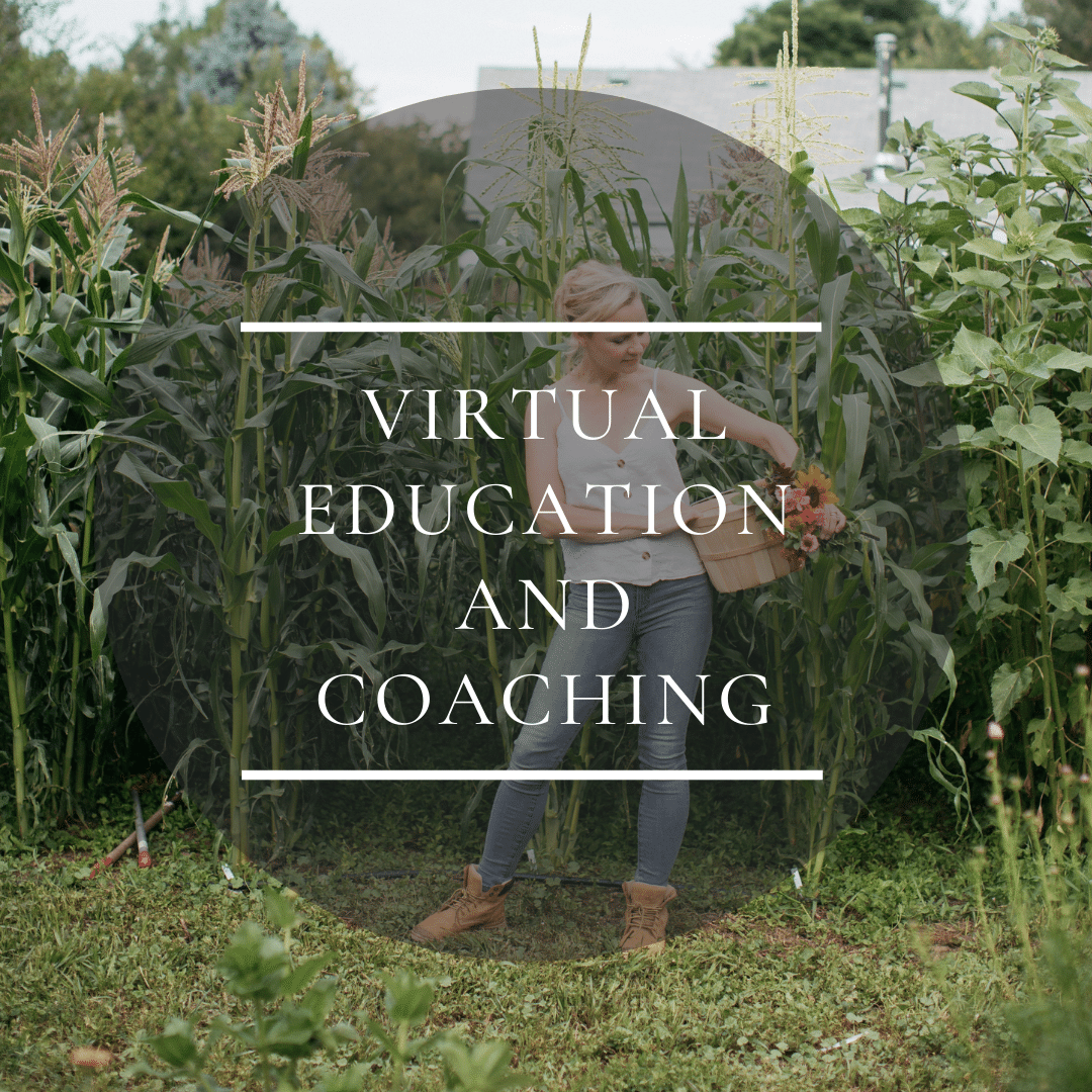 Virtual education and coaching for flower farmers and gardeners
