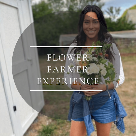 Experience a day in the life of a flower farmer at our colorado flower farm