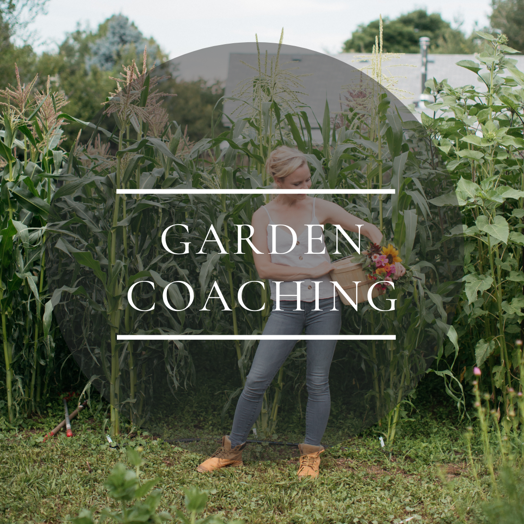 flower farming garden coaching consulting