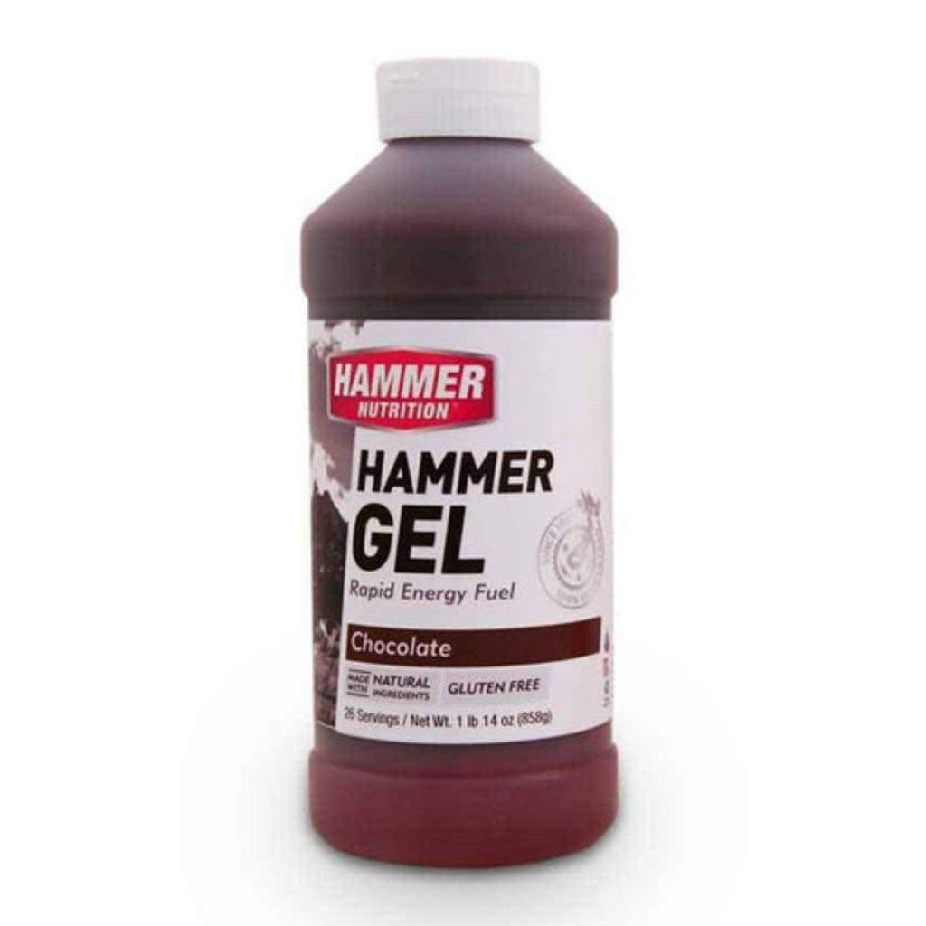 Hammer Nutrition Endurance Gel, 26 Serving Jug, Chocolate, Team Perfect