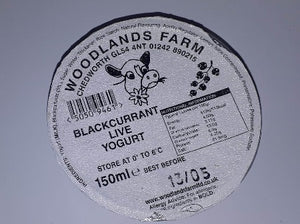 Blackcurrant Yogurt