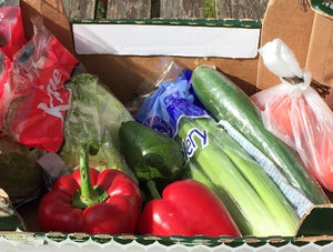Salad Box - Lettuce, Tomatoes, Peppers, Cucumber, Celery, Avocado
