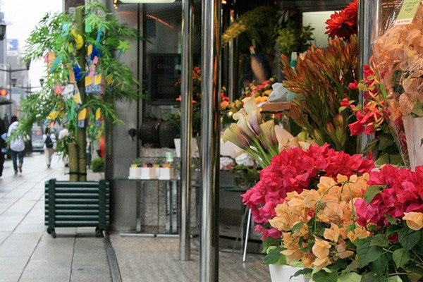 Flora Moments Factors Affecting Retail Prices