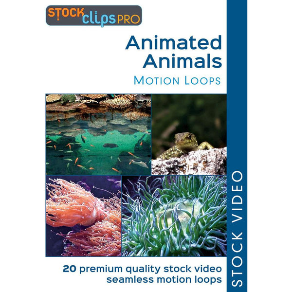 Animated Animals Motion Loops (Download)