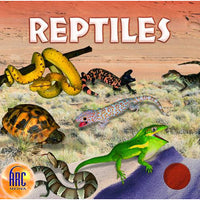 World of Reptiles (Download)