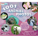 1001 Animal Photos (Download)