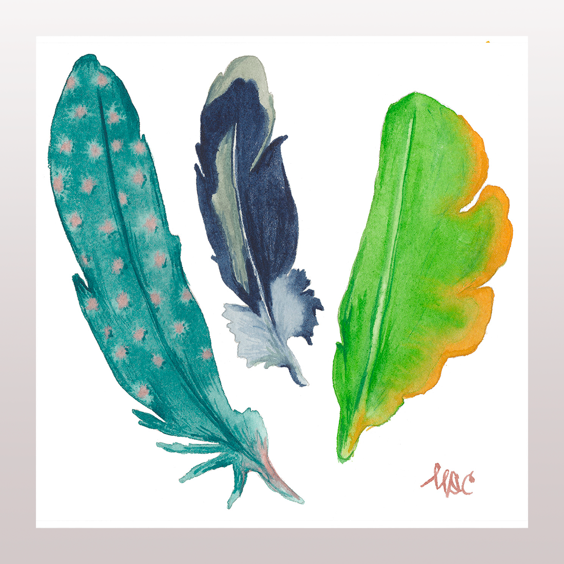Feathers #5