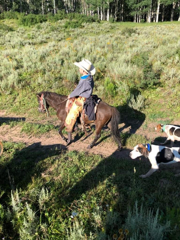 #37 Bronc 4 year old pony gelding