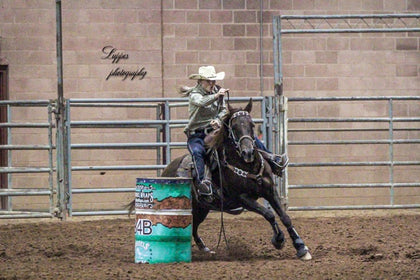 #07 Legendary Tang 7 year old AQHA Gelding