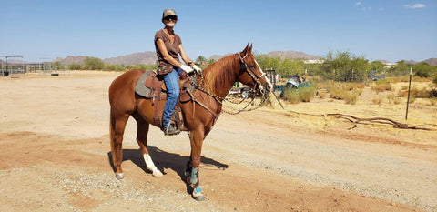 #03 Marky Mark 6 year old AQHA Gelding