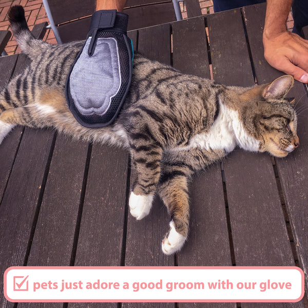 Zenify Pets Luxury Pet Grooming Glove