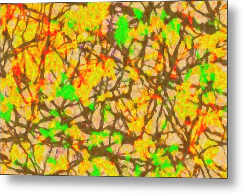 Autumn Abstract - Metal Print