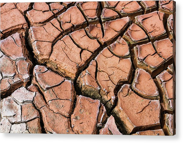 Dry River Bed - Acrylic Print