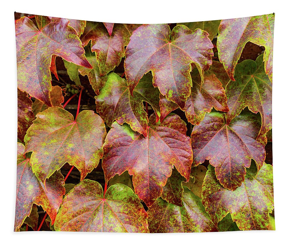 Grape Leaves - Tapestry