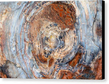 Load image into Gallery viewer, Petrified Wood - Canvas Print