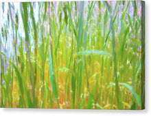 Load image into Gallery viewer, Tall Grass in Herat Pastel - Canvas Print