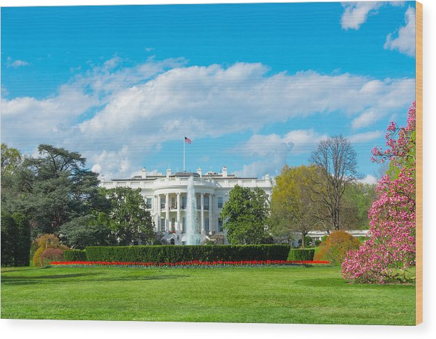 The White House - Wood Print